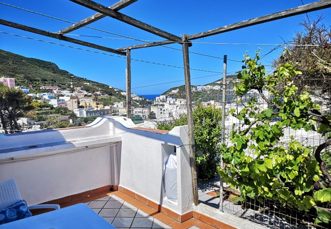 Appartamento a Ponza - La Maison Fiorita - mono La Vite -
