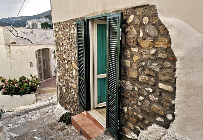 Affitto per camere a Ponza - Turistcasa - Santa Maria 1 -