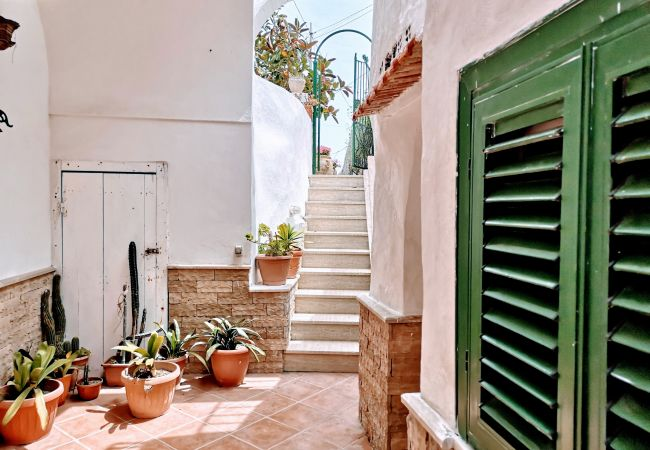 Appartement à Ponza - Turistcasa - Scotti 36 -
