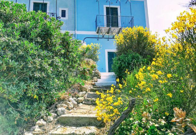Appartement à Ponza - Turistcasa - Piana 92 -