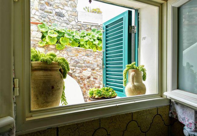 Appartement à Ponza - Turistcasa - Fontana 78 -