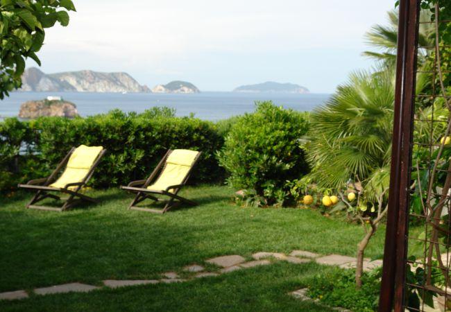 Rent by room на Ponza - b&b La Limonaia a mare 02