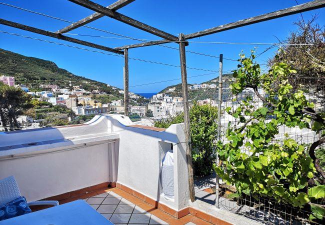 Апартаменты на Ponza - La Maison Fiorita - mono La Vite -